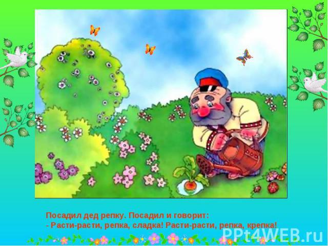 Посадил дед репку. Посадил и говорит:- Расти-расти, репка, сладка! Расти-расти, репка, крепка!