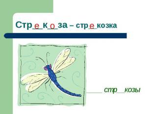 Стр__к__за – стр__козка ____ стр__козы