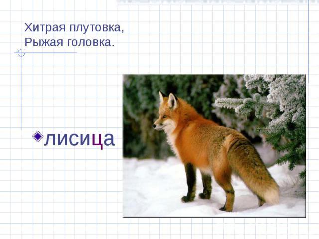 Хитрая плутовка,Рыжая головка. лисица