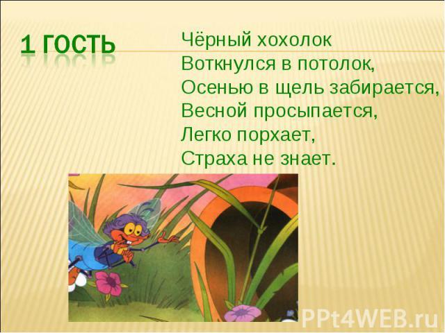 Чёрный хохолокВоткнулся в потолок,Осенью в щель забирается,Весной просыпается,Легко порхает,Страха не знает.