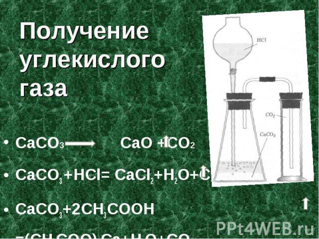 Получение углекислого газа СаСО3 СаО +СО2CaCO3 +HCl= CaCl2+H2O+CO2CaCO3+2CH3COOH =(CH3COO)2Ca+H2O+CO2
