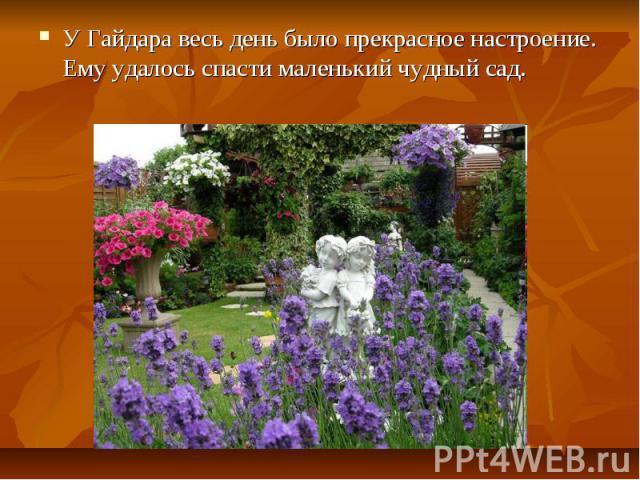 У Гайдара весь день было прекрасное настроение. Ему удалось спасти маленький чудный сад.