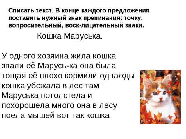 Списать текст. В конце каждого предложения поставить нужный знак препинания: точку, вопросительный, восклицательный знаки. Кошка Маруська.У одного хозяина жила кошка звали её Маруська она была тощая её плохо кормили однажды кошка убежала в лес там М…