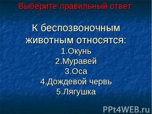Выберите правильный ответ К беспозвоночным животным относятся:1.Окунь2.Муравей3.