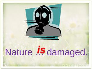 Nature … damaged.