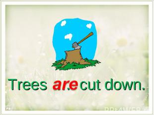 Trees … cut down.