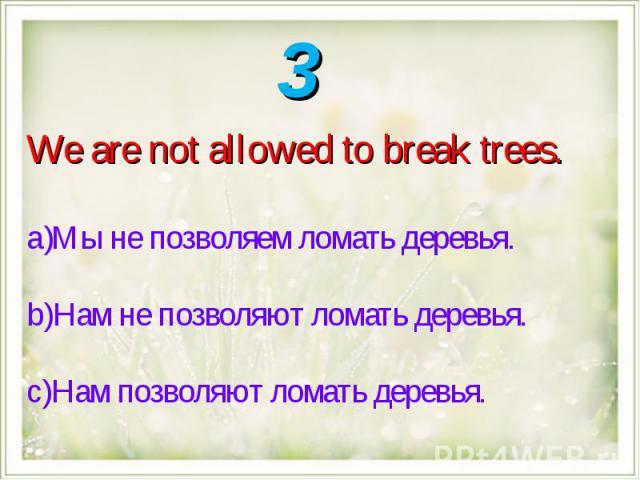 We are not allowed to break trees.Мы не позволяем ломать деревья.Нам не позволяют ломать деревья.Нам позволяют ломать деревья.