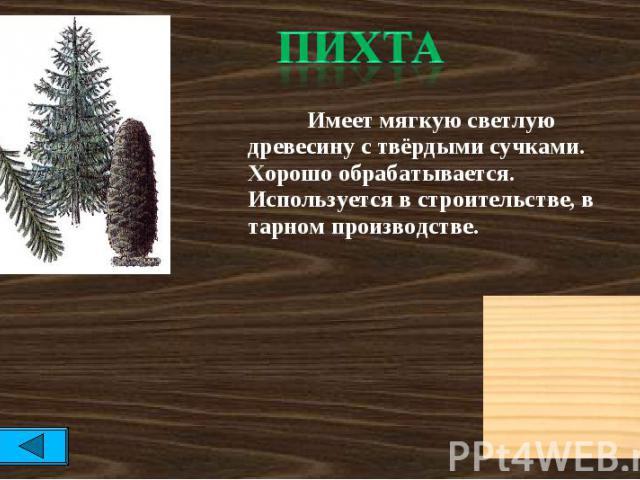 пихта Имеет мягкую светлую древесину с твёрдыми сучками. Хорошо обрабатывается. Используется в строительстве, в тарном производстве.