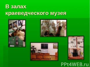 В залах краеведческого музея