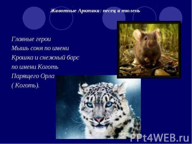 Животные Арктики: песец и тюлень Главные героиМышь соня по имениКрошка и снежный барс по имени Коготь Парящего Орла ( Коготь).