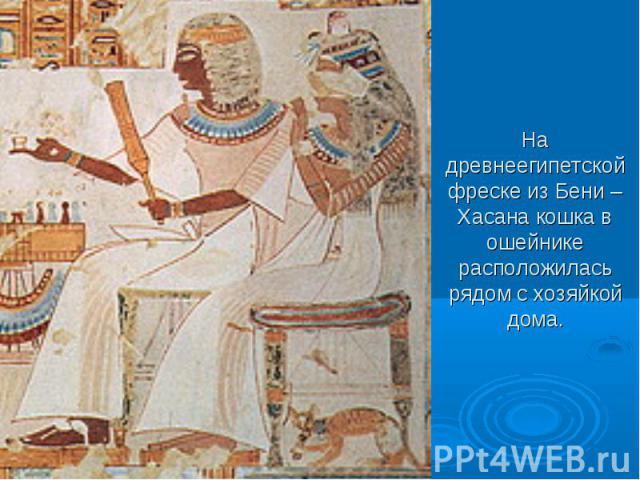 На древнеегипетской фреске из Бени – Хасана кошка в ошейнике расположилась рядом с хозяйкой дома.