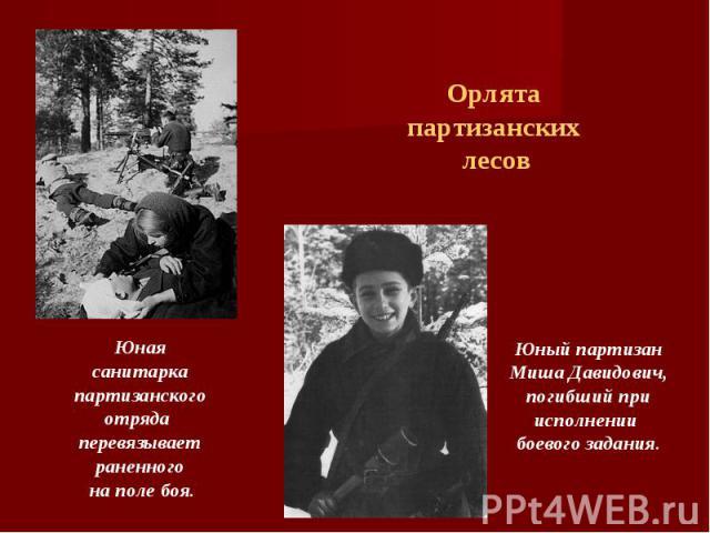 Орлята партизанских лесов Юнаясанитарка партизанского отряда перевязывает раненного на поле боя.Юный партизан Миша Давидович,погибший при исполнении боевого задания.