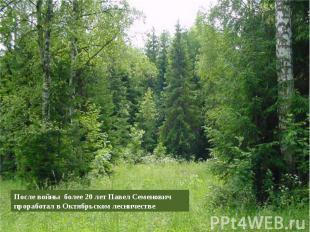 После войны более 20 лет Павел Семенович проработал в Октябрьском лесничестве