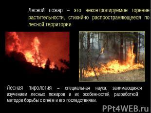 Лесной пожар – это неконтролируемое горение растительности, стихийно распростран