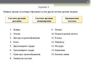 Задание 3 Выбрать органы, из которых образована та или другая система органов ля