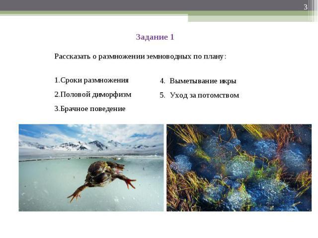 Задание 1 Рассказать о размножении земноводных по плану:Сроки размноженияПоловой диморфизмБрачное поведение4. Выметывание икры5. Уход за потомством