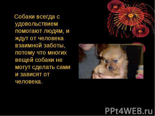 Собаки всегда с удовольствием помогают людям, и ждут от человека взаимной заботы, потому что многих вещей собаки не могут сделать сами и зависят от человека.