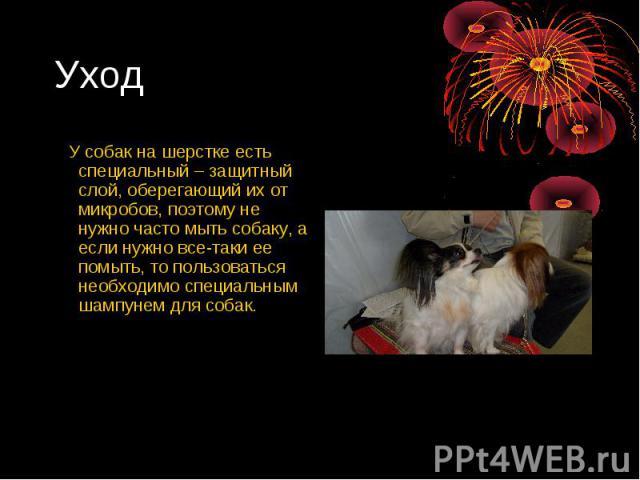 Уход У собак на шерстке есть специальный – защитный слой, оберегающий их от микробов, поэтому не нужно часто мыть собаку, а если нужно все-таки ее помыть, то пользоваться необходимо специальным шампунем для собак.