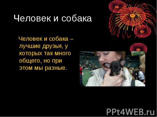 Человек и собака Человек и собака – лучшие друзья, у которых так много общего, но при этом мы разные.