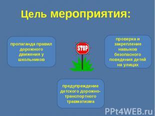 Цель мероприятия: пропаганда правил дорожного движения у школьниковпредупреждени