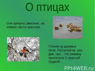 О птицахОни крикуны ужасные, на ножках ласты красные Птички на деревья сели, Пос