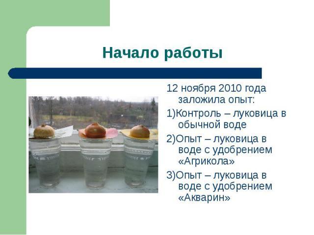 Начало работы 12 ноября 2010 года заложила опыт:1)Контроль – луковица в обычной воде2)Опыт – луковица в воде с удобрением «Агрикола»3)Опыт – луковица в воде с удобрением «Акварин»