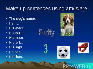 Make up sentences using am/is/are The dog's name…He …His eyes…His ears…His nose…