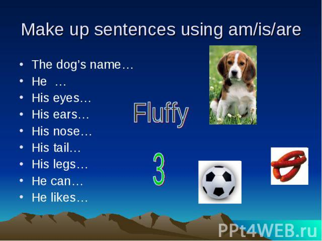 Make up sentences using am/is/are The dog's name…He …His eyes…His ears…His nose…His tail…His legs…He can…He likes…