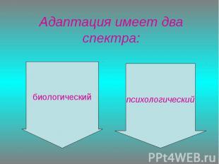 Адаптация имеет два спектра: биологическийпсихологический