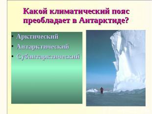 Какой климатический пояс преобладает в Антарктиде?АрктическийАнтарктическийСубан