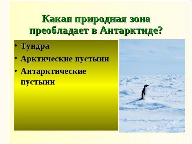 Какая природная зона преобладает в Антарктиде?ТундраАрктические пустыниАнтарктические пустыни