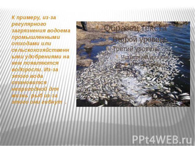 К примеру, из-за регулярного загрязнения водоема промышленными отходами или сельскохозяйственными удобрениями на нем появляются водоросли. Из-за этого вода становится непригодной для жизнь рыб из-за этого они гибнут . К примеру, из-за регулярного за…
