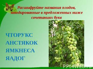 Расшифруйте названия плодов, закодированные в предложенных ниже сочетаниях буквЧ