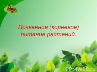 Почвенное (корневое) питание растений.