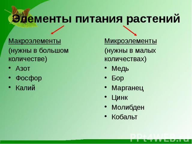 Элементы питания растенийМакроэлементы(нужны в большом количестве)АзотФосфорКалий