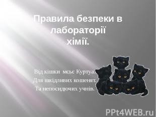 Правила безпеки в лабораторії хімії. Від кішки мсьє Куртуа. Для шкідливих кошеня