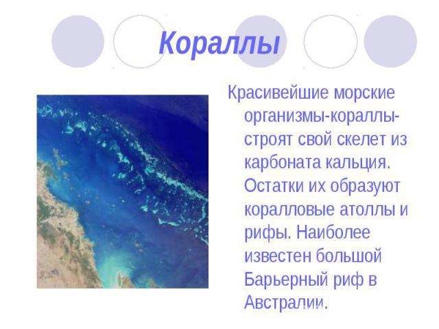 Красивейшие морские организмы-кораллы-строят свой скелет из карбоната кальция. Остатки их образуют коралловые атоллы и рифы. Наиболее известен большой Барьерный риф в Австралии. Красивейшие морские организмы-кораллы-строят свой скелет из карбоната к…