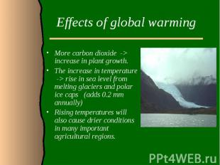 Effects of global warmingMore carbon dioxide -> increase in plant growth.The
