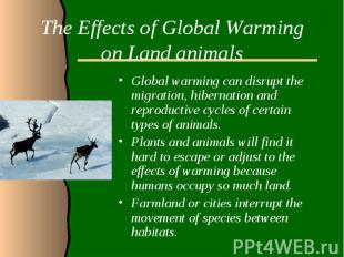 The Effects of Global Warming on Land animalsGlobal warming can disrupt the migr