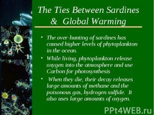 The Ties Between Sardines & Global WarmingThe over-hunting of sardines has c