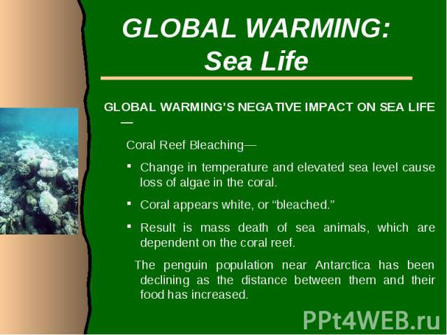 """GLOBAL WARMING:Sea LifeGLOBAL WARMING'S NEGATIVE IMPACT ON SEA LIFE—Coral Reef Bleaching— Change in temperature and elevated sea level cause loss of algae in the coral. Coral appears white, or """"bleached."""" Result is mass death of sea animals, which a…"""