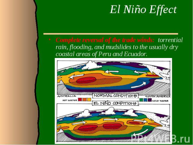 El Niño Effect Complete reversal of the trade winds: torrential rain, flooding, and mudslides to the usually dry coastal areas of Peru and Ecuador.