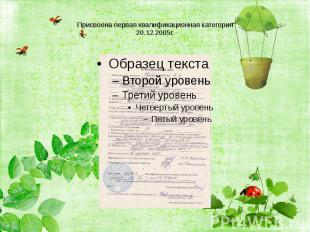 Присвоена первая квалификационная категория20.12.2005г.
