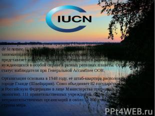 3.Всемирный союз охраны природы (Union internationale pour la conservation