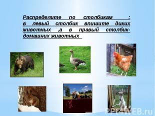 Распределите по столбикам : в левый столбик впишите диких животных ,а в правый с