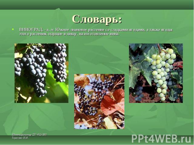Словарь: ВИНОГРАД, –а, м. Южное лиановое растение со сладкими ягодами, а также ягоды этого растения, идущие в пищу, на изготовление вина.