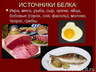 ИСТОЧНИКИ БЕЛКА: Икра, мясо, рыба, сыр, орехи, яйца, бобовые (горох, соя, фасоль
