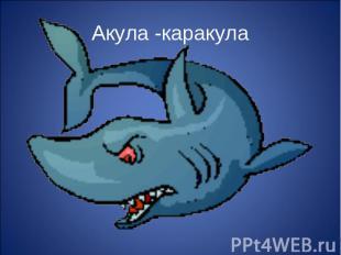 Акула -каракула