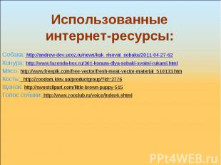 Использованные интернет-ресурсы: Собака: http://andrew-dev.ucoz.ru/news/kak_riso