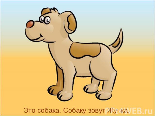 Это собака. Собаку зовут Жучка.